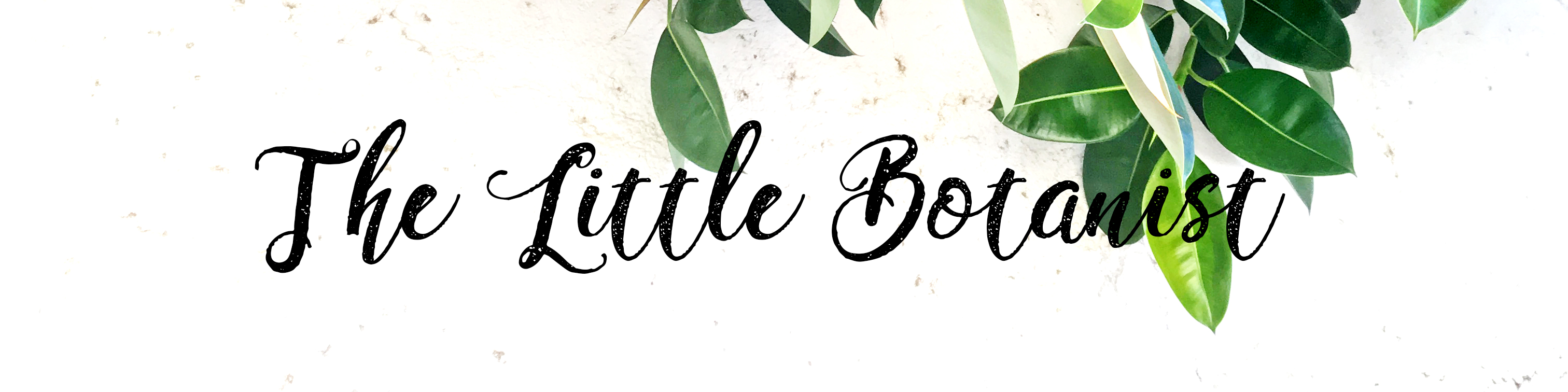 The little botanist